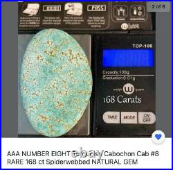 #8 NUMBER EIGHT Turquoise Cabochon Cab RARE 168ct Spiderwebbed NATURAL GEM