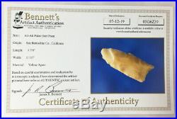 Certified Rare Paleo Atl-Atl Point #1 San Bernardino Co California Bennett COA
