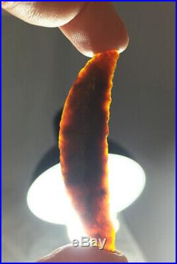 Certified Rare Paleo Crescent Translucent Agate California Bennett COA