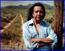 Fritz Scholder Bird Indian 1973 Rare Stone Lithograph Native American ArtF