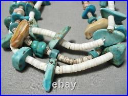 Rare Purple String Vintage Navajo Turquoise Santo Domingo Necklace