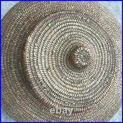 Rare lidded Jicarilla Apache Native American basket withbirds 1920s-30s 12 X 8